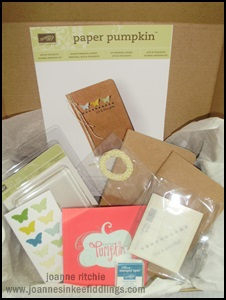 Paper Pumpkin Kit