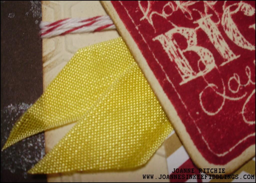 Daffodil Delight Seam Binding Ribbon Finish