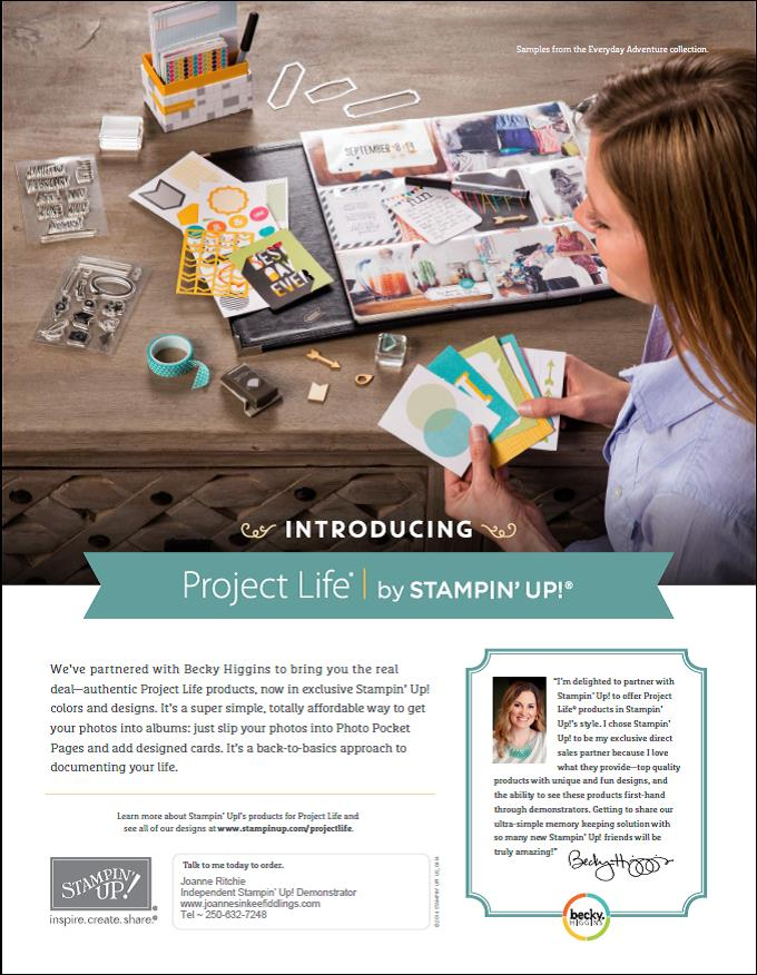 Project Life by Becky Higgins NOW sold by Stampin' Up!