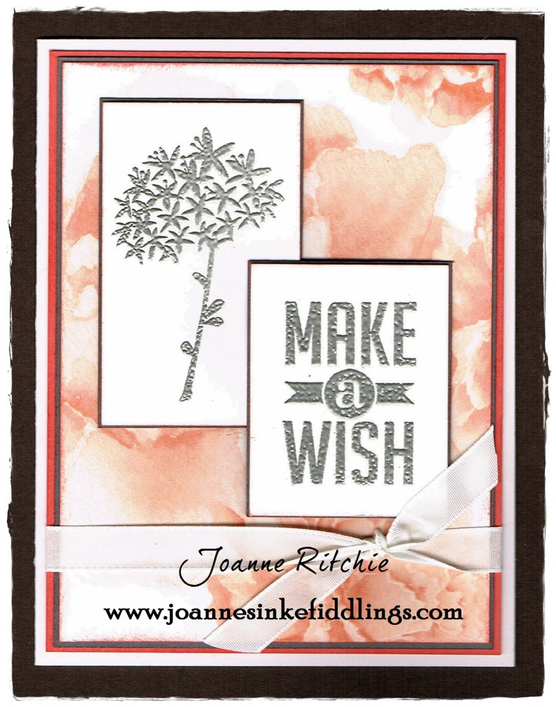 Simple Stems - Make a Wish - JIF
