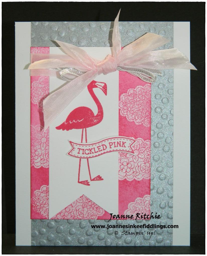 Mojo362 - Flamingo Lingo - JIF